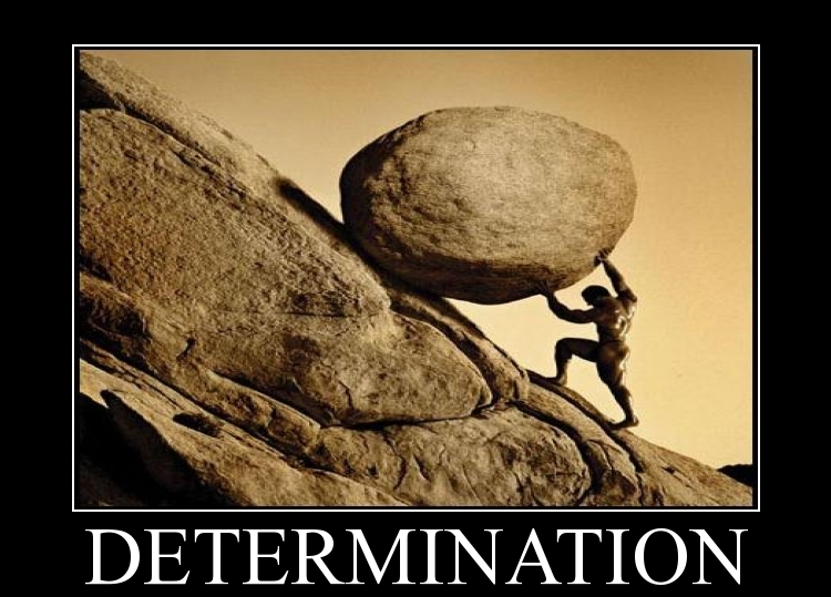 Fitness Determination Poster